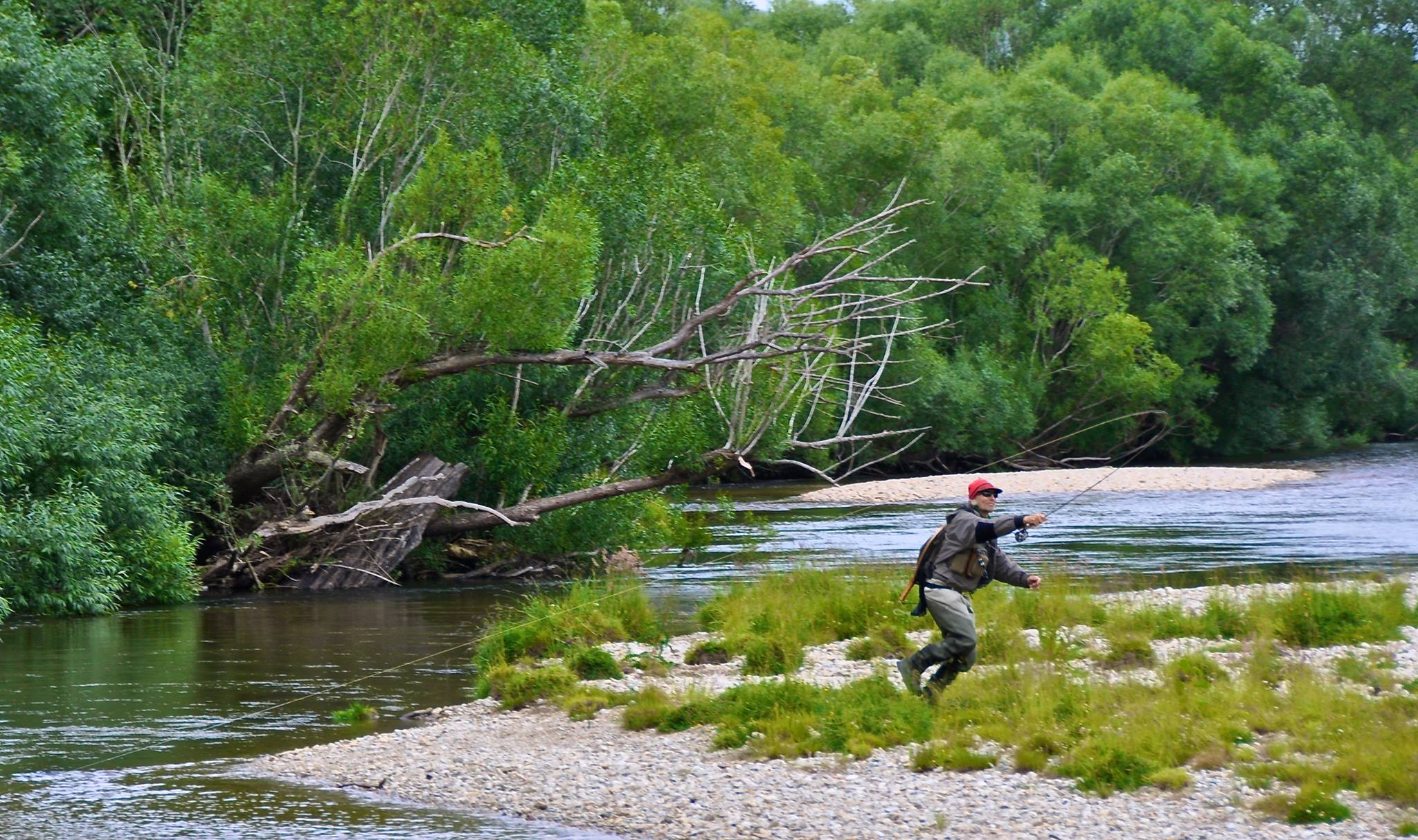 Guided fly fishing for new zealand trout with nzpfga guide for Fly fishing new zealand