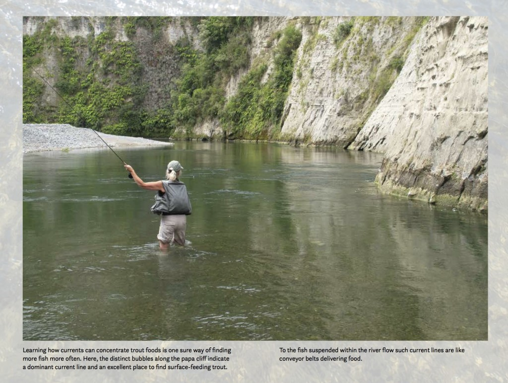 Fly Fishing in New Zealand, What You NEED to Know, by Derek Grzelewski 11