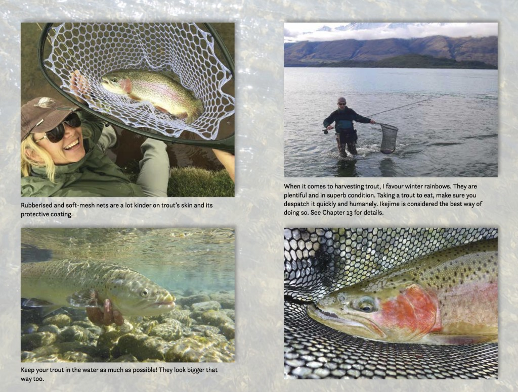 Fly Fishing in New Zealand, What You NEED to Know, by Derek Grzelewski 3